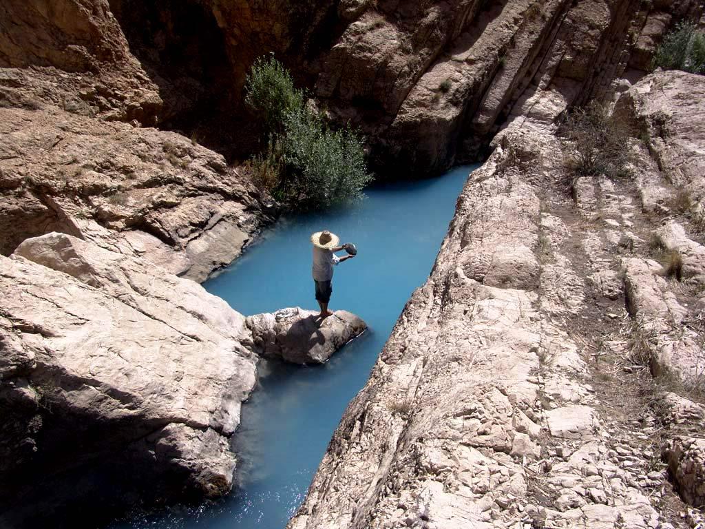 رهایی ماهی ها در آب رودخانه هراز