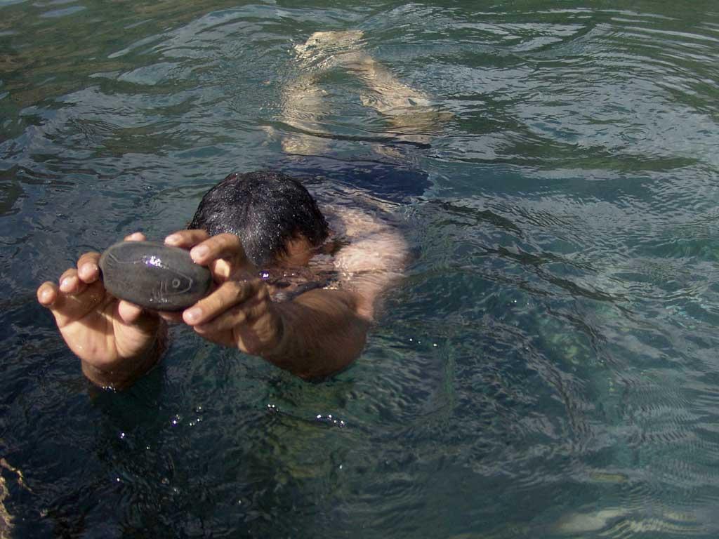 رفتن به دنیای زیر آب و رها سازی ماهی