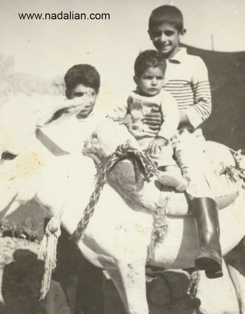 من و پسر عمو مهدی سوار بر الاغ سفید