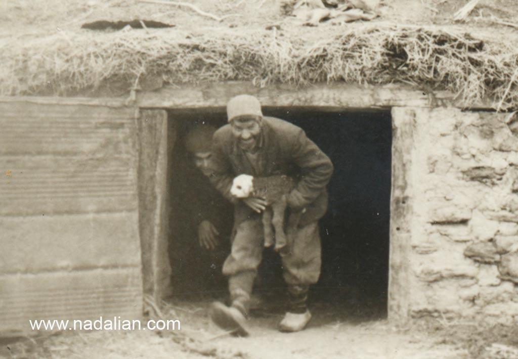 پدربزرگ از چفت که محل نگهداری گوسفندان در زمستان بود بره می آورد.