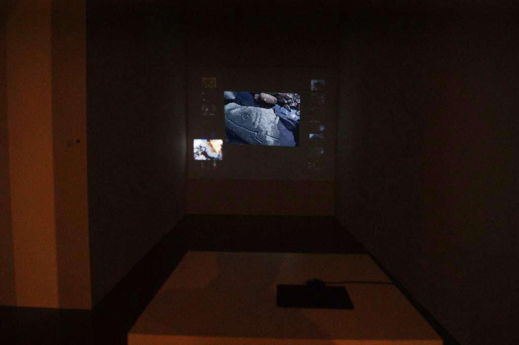 چیدمان ویدیویی تعاملی، نمایشگاه هنر محیطی همزمان با نشست سران جی 20 با عنوان محیط زیست پایدار، کره جنوبی موزه آرکو در سئول