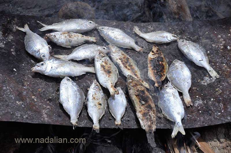 Roasted fish in the shared kitchen on the alley, Hormoz Island