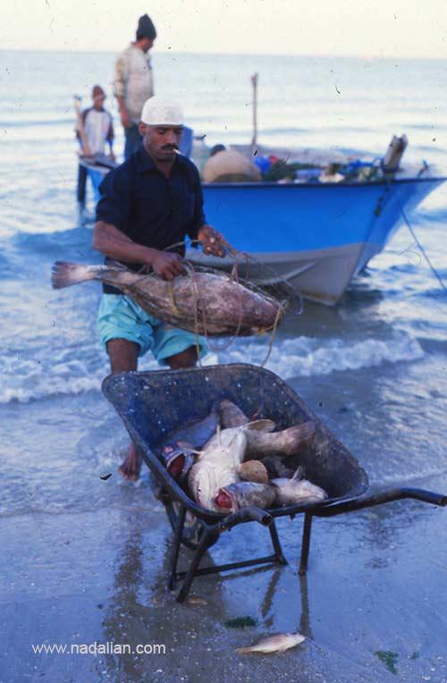 صیادان در نزدیکی بازار قدیم ماهی فروشان بندر عباس