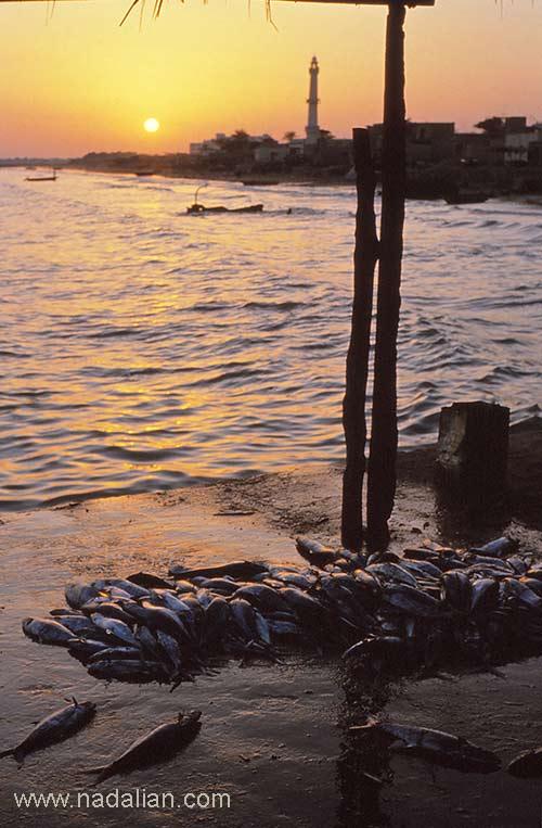 اسلاید چشمنداز غربی بازار قدیم ماهی فروشان، بندر عباس
