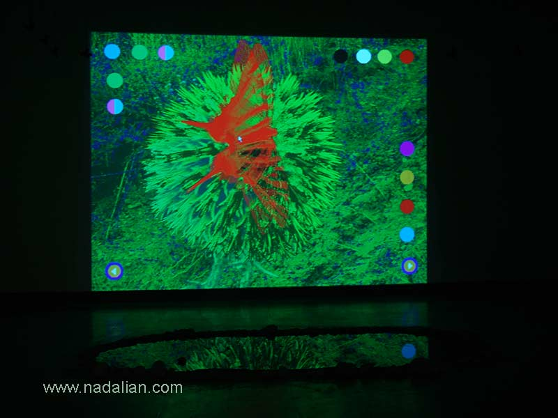 Our Paradise : Interactive Multimedia Art by Ahmad Nadalian, Nature in the East, Saba Cultural Complex, 2005