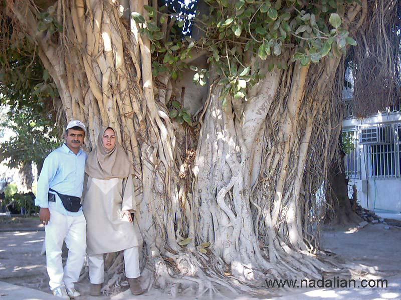 در کنار همسرم اتل منشادی - بندرعباس
