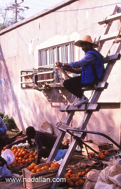 احمد نادعلیان در حال طراحی از بالای نردبان بازار قدیم بندر عباس