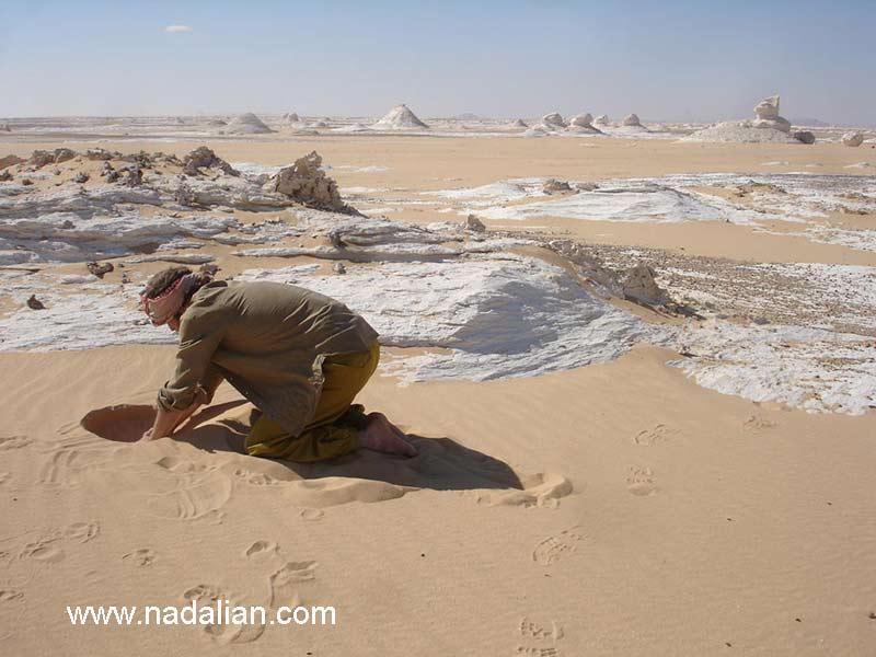 اریک ون هو دوست احمد نادعلیان در حال پنهان سازی یک سنگ حجارس شده نادعلیان در صحرای مصر