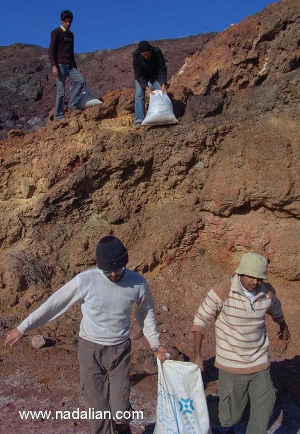 هنرمندان شرکت کننده در حال جابجایی خاک- احمد کارگران، وحید زارع، محمد سایبانی و محمد علی مویدی -13 دیماه 1385