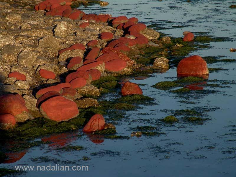 """ساحل """"مغ ناخا"""" بندر عباس نقاشی با خاک سرخ بر روی سنگهای کنار ساحل"""