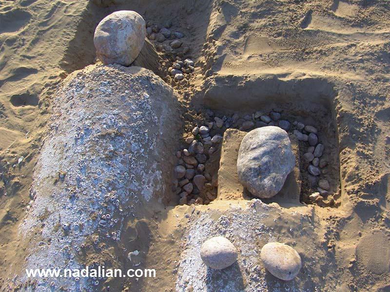 چیدمان با سنگ، بندر عباس دیماه 1385، کارگاه مجسمه شنی و صخره ای